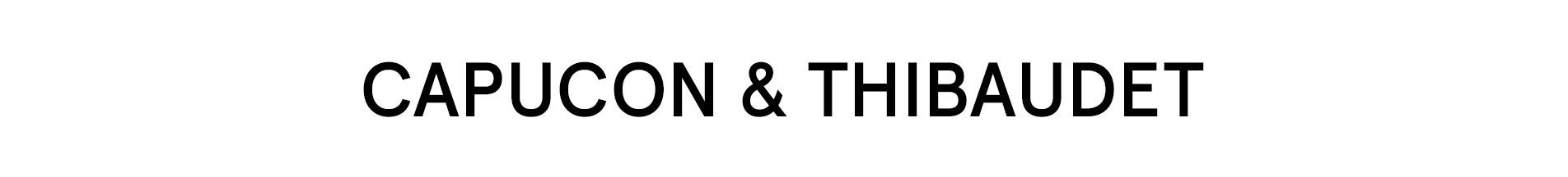Capucon & Thibaudet