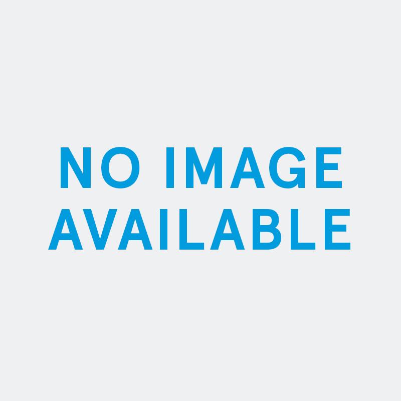Palm Vase White
